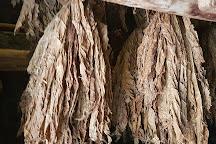 Tabaco da Maia Museum, Ribeira Grande, Portugal