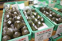 Junsai no Yakata, Mitane-cho, Japan