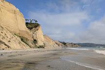 Mushroom Beach, La Jolla, United States