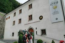 Landtag of Liechtenstein, Vaduz, Liechtenstein