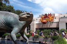 Dino-Sue, Orlando, United States