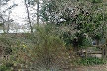 Le Parc Myocastor, Dolus-d'Oleron, France