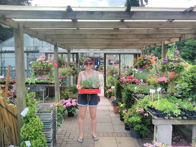 Bents Green Nurseries
