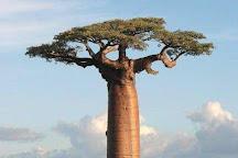 Wasini Island, Shimoni, Kenya