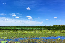Mamukala Wetlands, Kakadu National Park, Australia