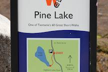 Pine Lake, Tasmania, Australia