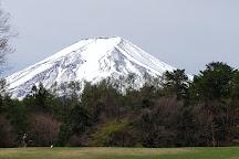 Suwanomori Nature Park, Fujiyoshida, Japan