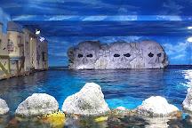 Gardaland SEA LIFE Aquarium, Castelnuovo del Garda, Italy