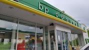 BP & Wild Bean Café