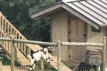 Fainting Goat Vineyards and Winery, Jasper, United States