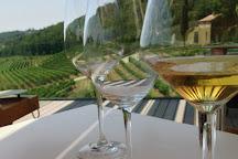 Kozlovic Winery, Momjan, Croatia