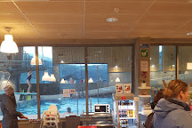 Lustrabadet, Gaupne, Norway