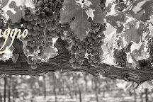 Passaggio Wines, Sonoma, United States
