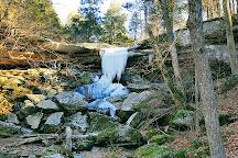 Shawnee National Forest, Illinois, United States