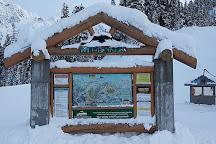 Mt Baker Ski Area, Glacier, United States