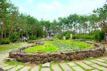 Semiwon, Yangpyeong-gun, South Korea