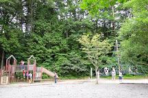 Sakana Park, Oshino-mura, Japan