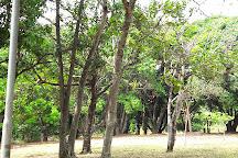 Parque Ecologico de Aguas Claras, Aguas Claras, Brazil
