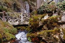 Jardin alpin La Jaysinia, Samoens, France