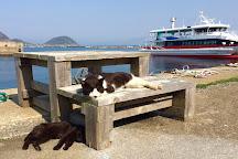 Ainoshima Island, Shingu-machi, Japan