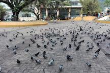 Plaza los Libertadores, Villavicencio, Colombia