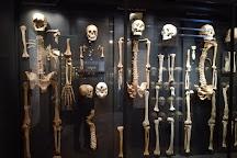 Øm Kloster Museum, Ry, Denmark