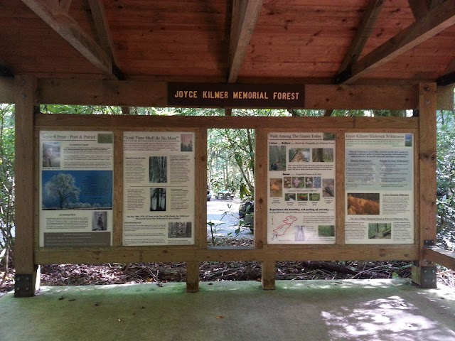 Joyce Kilmer Memorial Forest, Cheoah Ranger District, Nantahala National Forest