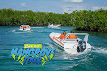 Jungle Tour Barracuda, Cancun, Mexico