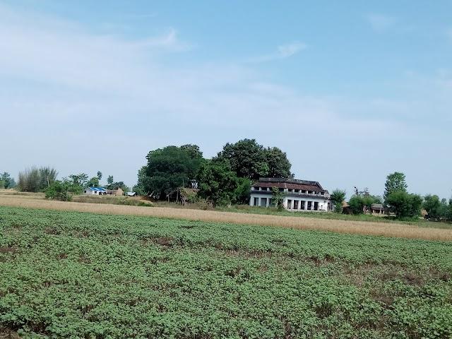 District de Bardiya