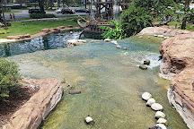 Pirate's Cove Adventure Golf, Orlando, United States