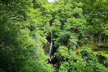 Black Spout Wood, Pitlochry, United Kingdom