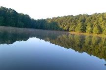 Turner lake, Covington, United States