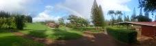 Harvest at Kumulani Chapel maui hawaii