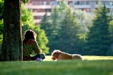 Upmarket Pets melbourne Australia