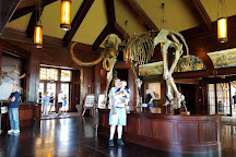 Ancient Ozarks Natural History Museum, Ridgedale, United States