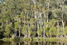 Lake Tyers State Park, Tyers, Australia