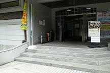 Niimi Art Museum, Niimi, Japan