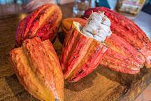 Reina's Chocolate, Tamarindo, Costa Rica