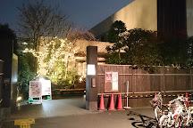 Tokyo Somei Spa Sakura, Komagome, Japan