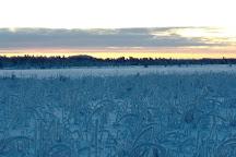 Reindeer Farm Petri Mattus, Inari, Finland