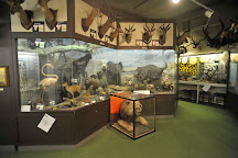 Kendal Museum, Kendal, United Kingdom