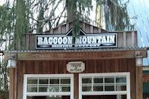Raccoon Mountain Dam, Chattanooga, United States