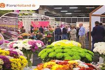 Royal Flora Holland, Aalsmeer, The Netherlands