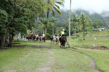 Mount-N-Ride Adventures, Cairns, Australia