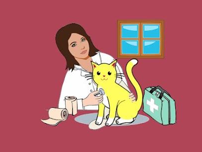pet wound care