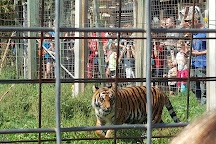 DeYoung Family Zoo, Wallace, United States