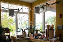 Olive Oil Outpost, Anna Maria, United States