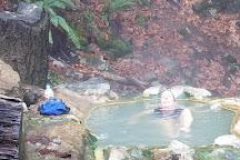 Umpqua Hot Springs, Roseburg, United States