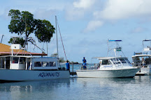 Aquanauts Grenada, Grand Anse, Grenada