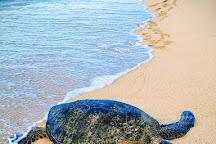 Kanaha Beach Park, Maui, United States